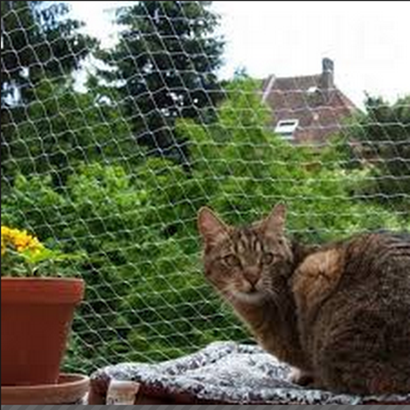 Balcony Protective Cat Net Anti Bird Netting Knotted Net