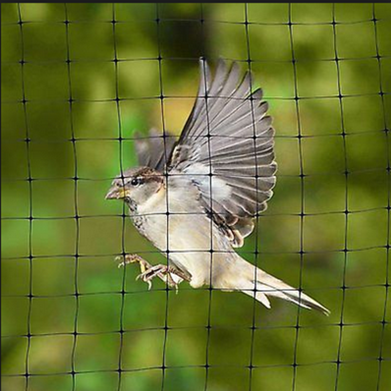 BOP extruded Anti Bird Net